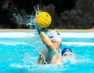 Fotografie - Sport I